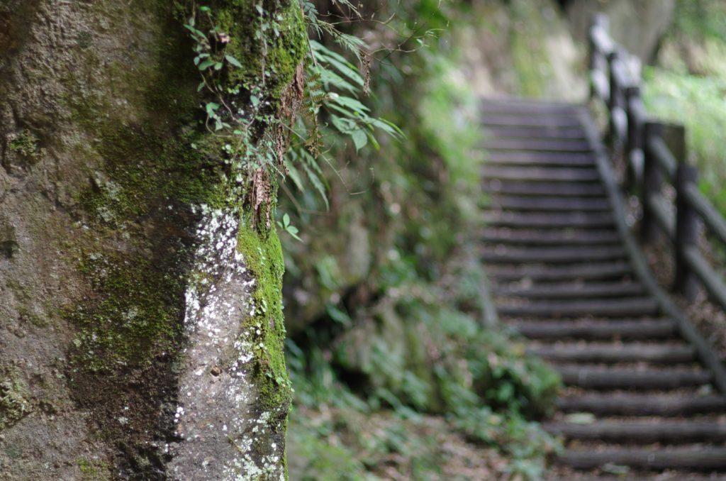 鹿児島県霧島市「犬飼滝」 階段 inukainotaki3