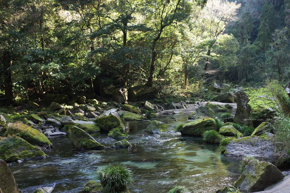 雄川の滝の下流 鹿児島県南大隅町