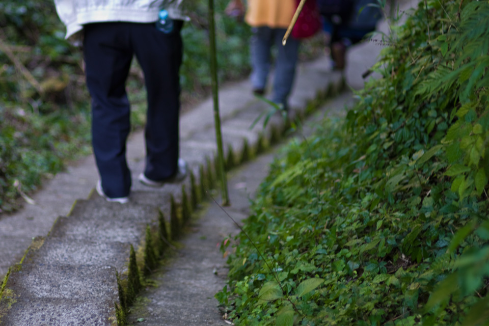 雄川の滝 遊歩道・階段 鹿児島県南大隅町 ogawanotaki4