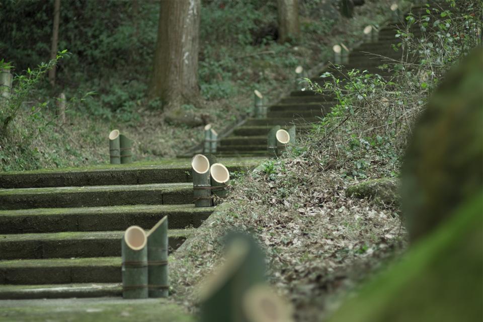 参道に並べられた竹筒「熊野神社」湧水町
