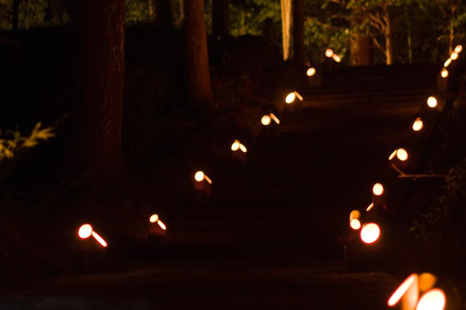 参道の竹あかり・階段「熊野神社」湧水町