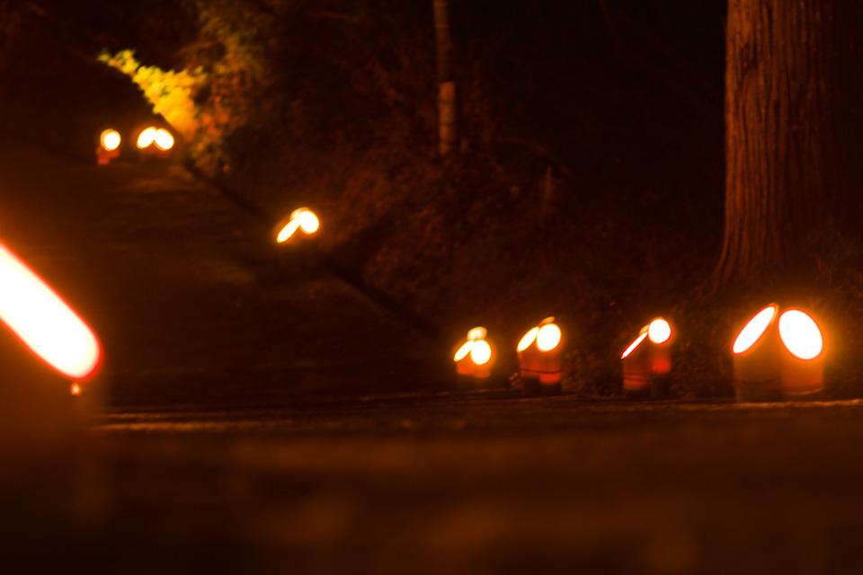 参道を灯す竹あかり「熊野神社」湧水町
