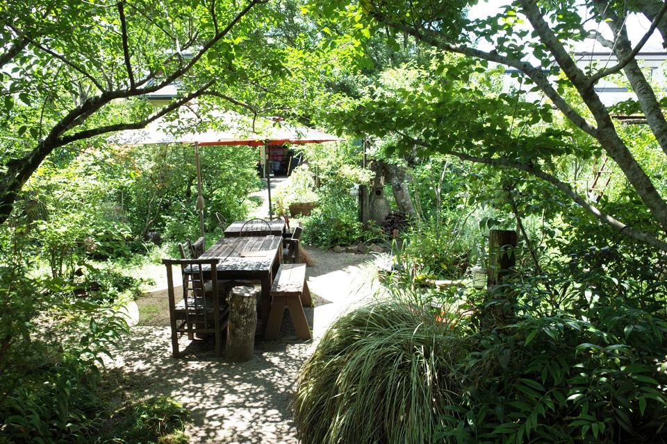 夏の緑に囲まれた中庭「花みずき窯」