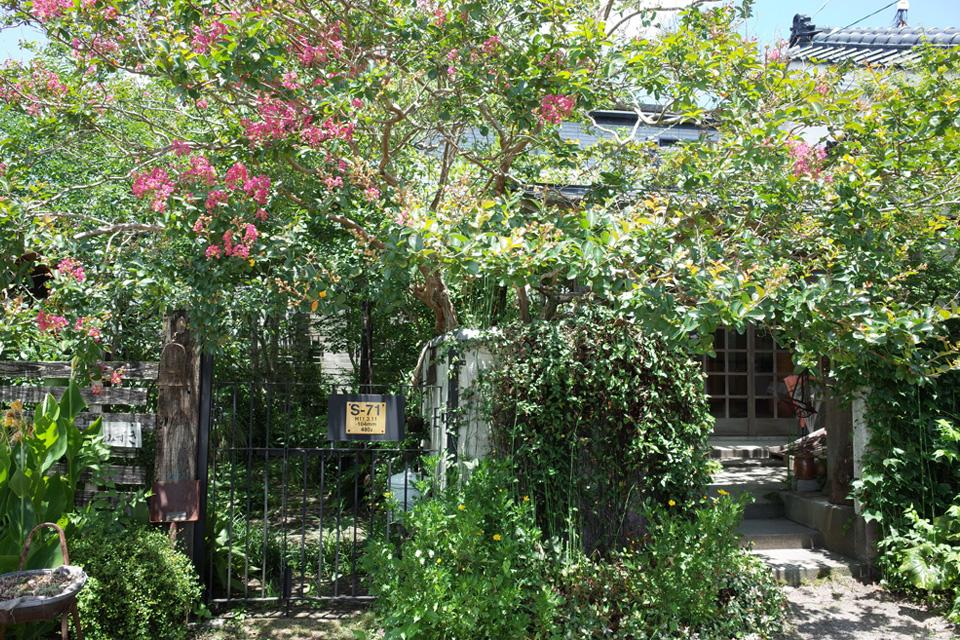夏の緑に囲まれた軒先「花みずき窯」