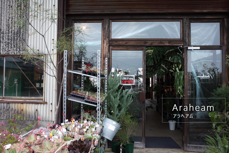 多肉植物・観葉植物と生活雑貨の「Araheam (アラヘアム)」鹿屋市