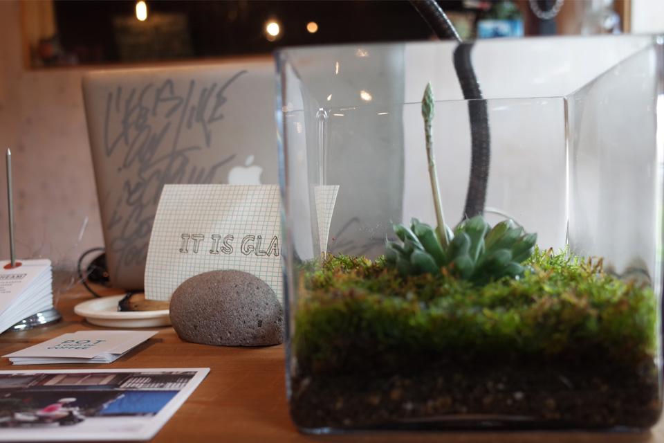 多肉植物+苔「Araheam (アラヘアム)」鹿児島県鹿屋市